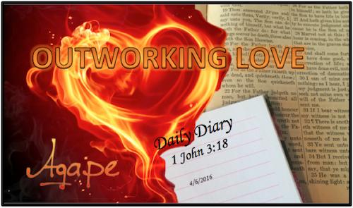 Daily Diary February 19th, 2019