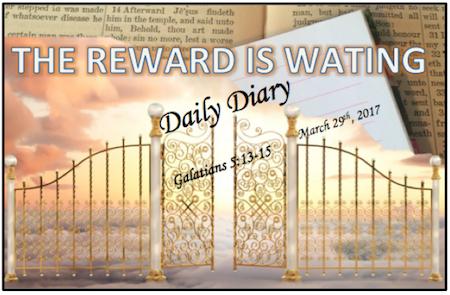 Daily Diary February 11th, 2019