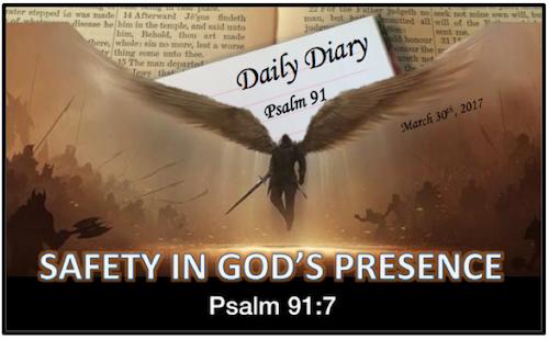 Daily Diary February 12th, 2019